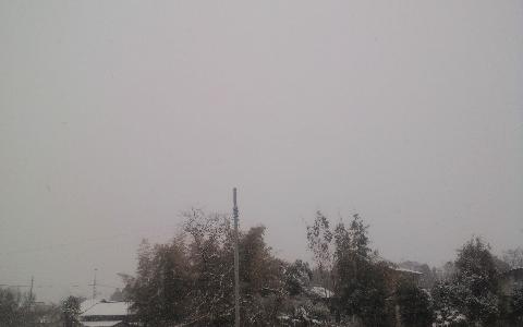 雪の空です