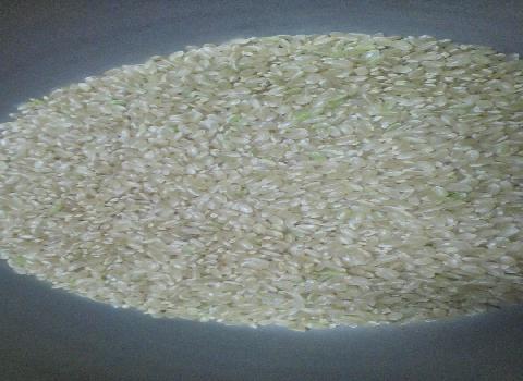 調合済みの玄米